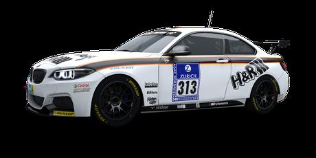Walkenhorst Motorsport - #313